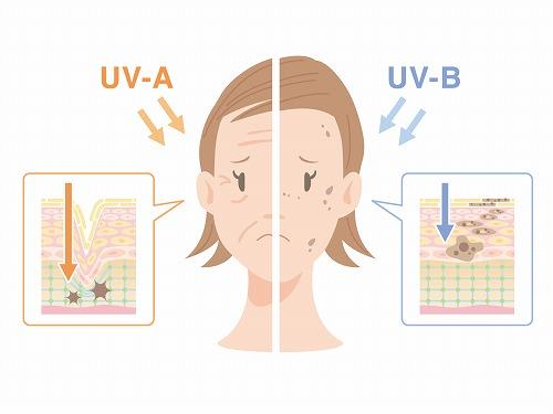 紫外線によるお肌へのダメージ